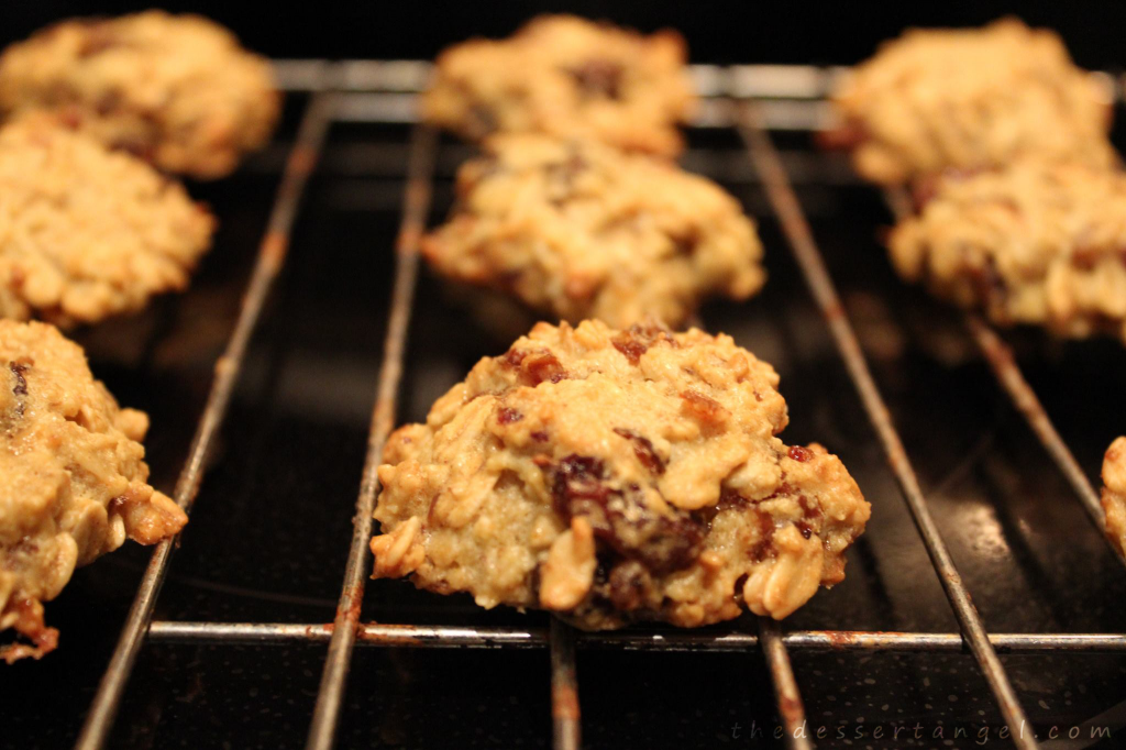 Nutty Chocolate Cranberry Oatmeal Cookies by TheDessertAngel.com